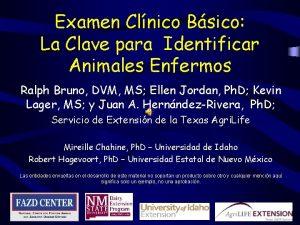Examen Clnico Bsico La Clave para Identificar Animales