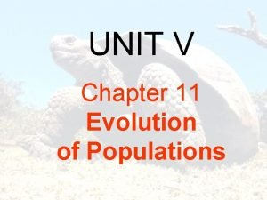 UNIT V Chapter 11 Evolution of Populations UNIT