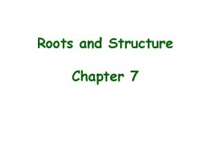 Roots and Structure Chapter 7 Roots The main