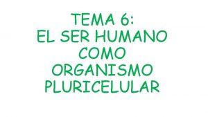TEMA 6 EL SER HUMANO COMO ORGANISMO PLURICELULAR
