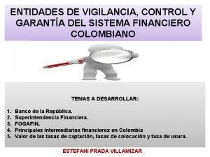 ENTIDADES DE VIGILANCIA CONTROL Y GARANTA DEL SISTEMA