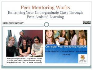 Peer Mentoring Works Enhancing Your Undergraduate Class Through