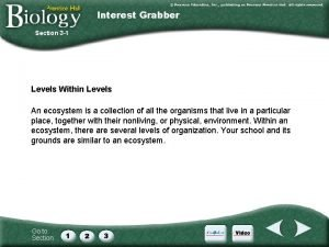Interest Grabber Section 3 1 Levels Within Levels