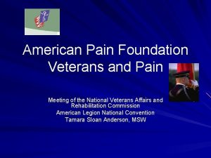 American Pain Foundation Veterans and Pain Meeting of