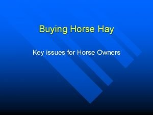 Buying Horse Hay Key issues for Horse Owners