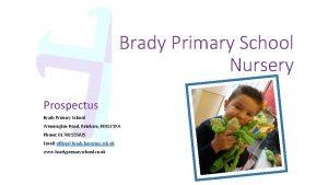 Brady Primary School Nursery Prospectus Brady Primary School