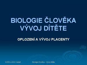 BIOLOGIE LOVKA VVOJ DTTE OPLOZEN A VVOJ PLACENTY