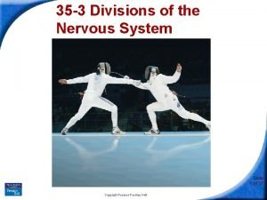 35 3 Divisions of the Nervous System Slide