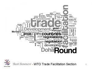 Sheri Rosenow WTO Trade Facilitation Section 1 The
