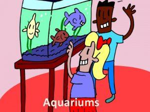 Aquariums I So You Want An Aquarium A