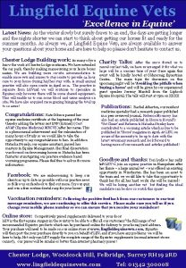 Excellence in Equine Lingfield Equine Vets Summer Newsletter