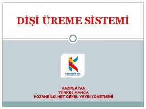 D REME SSTEM HAZIRLAYAN TRKE MANGA KOZANBLG NET