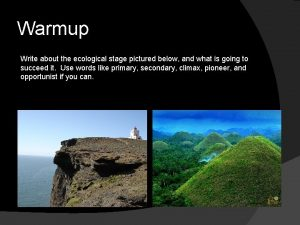 Warmup Write about the ecological stage pictured below
