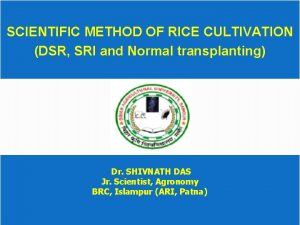 SCIENTIFIC METHOD OF RICE CULTIVATION DSR SRI and