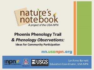 Phoenix Phenology Trail Phenology Observations Ideas for Community
