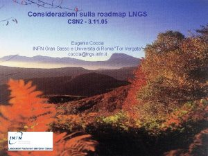 Considerazioni sulla roadmap LNGS CSN 2 3 11