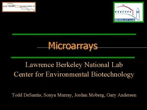 Microarrays Lawrence Berkeley National Lab Center for Environmental