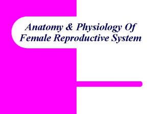 Anatomy Physiology Of Female Reproductive System Learning Objectives
