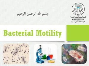 Bacterial Motility v The ability of an organism