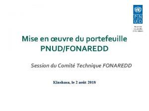 Mise en uvre du portefeuille PNUDFONAREDD Session du