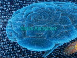 Boala Alzheimer CUPRINS GENERALITI ISTORIC INCIDEN I DEBUT