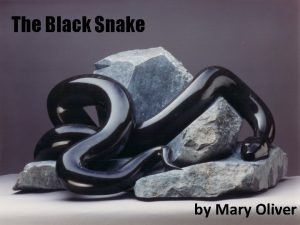 The Black Snake by Mary Oliver Mary Oliver