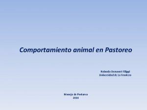 Comportamiento animal en Pastoreo Rolando Demanet Filippi Universidad