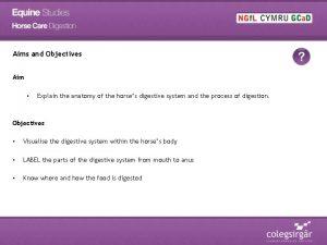 Aims and Objectives Aim Explain the anatomy of