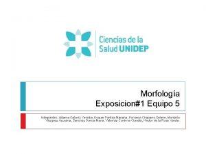 Morfologa Exposicion1 Equipo 5 Integrantes Aldama Galaviz Yessika