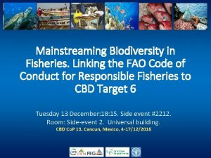 Mainstreaming Biodiversity in Fisheries Linking the FAO Code