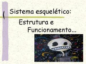 Sistema esqueltico Estrutura e Funcionamento O esqueleto humano