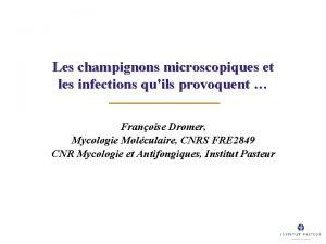 Les champignons microscopiques et les infections quils provoquent