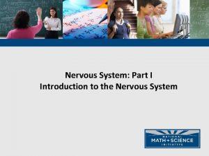 Nervous System Part I Introduction to the Nervous