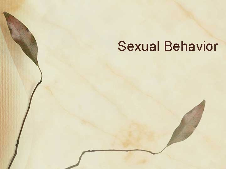 Sexual Behavior Possible Sexual Moralities No sex without