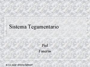 Sistema Tegumentario Piel Faneras m v z oscar