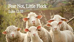 Fear Not Little Flock Luke 12 32 Fear