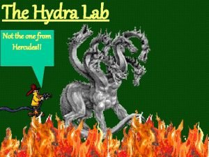 The Hydra Lab Not the one from Hercules