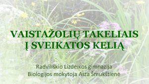 VAISTAOLI TAKELIAIS SVEIKATOS KELI Radvilikio Lizdeikos gimnazija Biologijos