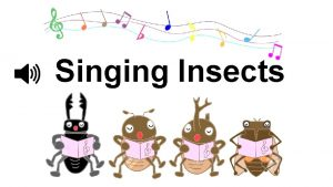 Singing Insects QWhat singing insects do you like