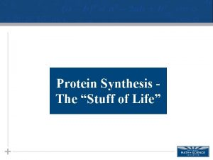 Protein Synthesis The Stuff of Life Proteins Proteins