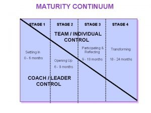 MATURITY CONTINUUM STAGE 1 STAGE 2 STAGE 3