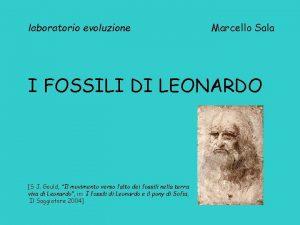 laboratorio evoluzione Marcello Sala I FOSSILI DI LEONARDO