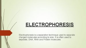 ELECTROPHORESIS Electrophoresis is a separation technique used to