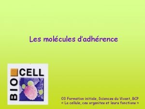 Les molcules dadhrence 03 Formation initiale Sciences du