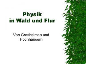 Physik in Wald und Flur Von Grashalmen und