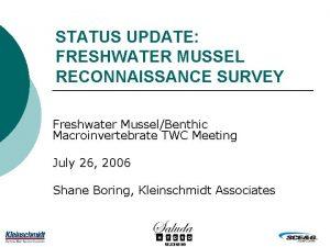 STATUS UPDATE FRESHWATER MUSSEL RECONNAISSANCE SURVEY Freshwater MusselBenthic