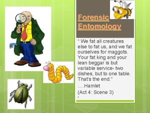 Forensic Entomology We fat all creatures else to