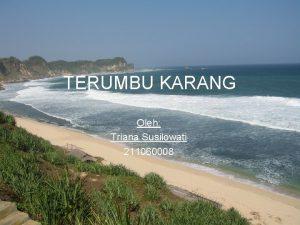 TERUMBU KARANG Oleh Triana Susilowati 211060008 Terumbu karang