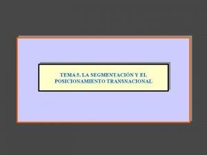 TEMA 5 LA SEGMENTACIN Y EL POSICIONAMIENTO TRANSNACIONAL