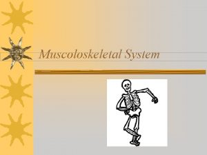 Muscoloskeletal System Musculoskeletal System Consists of Bones Muscles